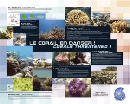 """Poster """"le corail en danger"""""""