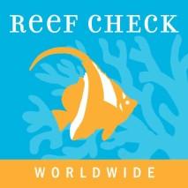 Logo RC international