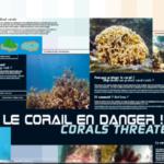 1. Photo Affiche Le corail en danger