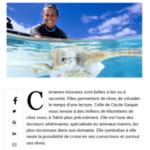 2. Photo_17 mars 2018 - L'union.fr - La Marnaise, Cécile Gaspard consacre sa vie à la protection des animaux marins à Tahiti