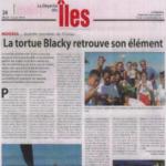 4. Photo_12 juin 2018_La_tortue_Blacky_retrouve_son_element