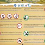 Les règles d'or de la visite lagonaire-réduit