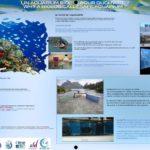 Why a biological safe aquarium