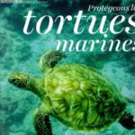 Hine-magazine-protegeons-les-tortues-marines