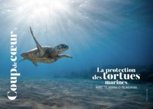 Aremiri magazine tortue marine