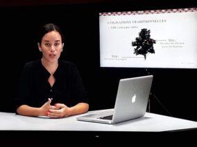 Capsules e-learning